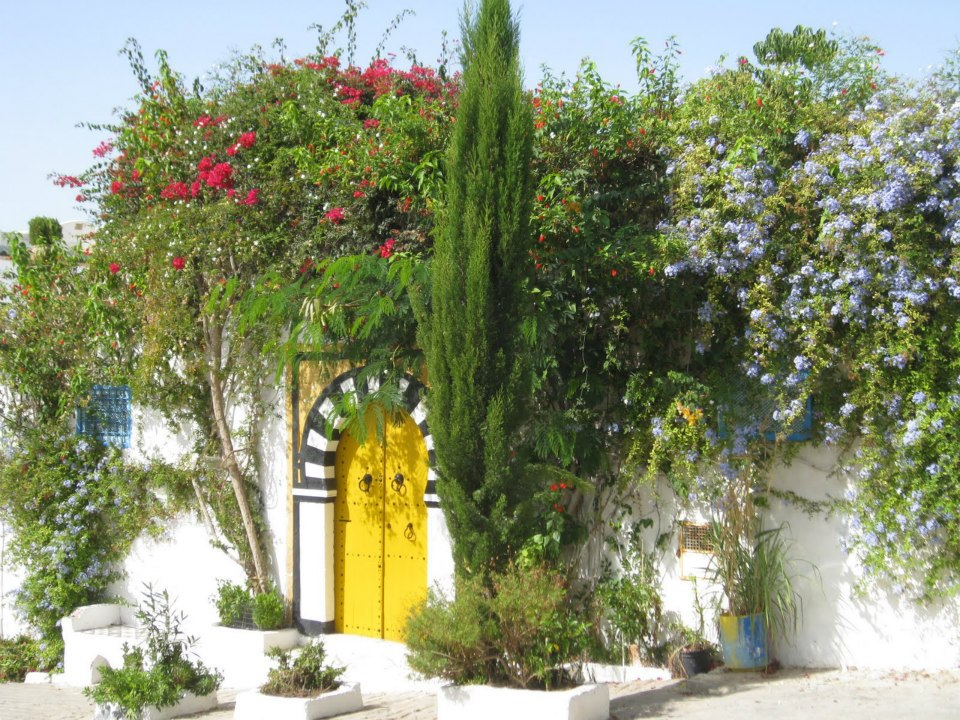 Les Maisons tunisiennes